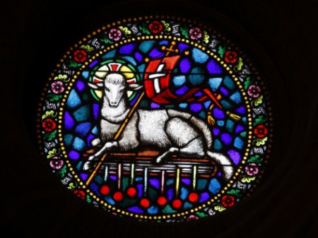 Christ the Lamb stained glass